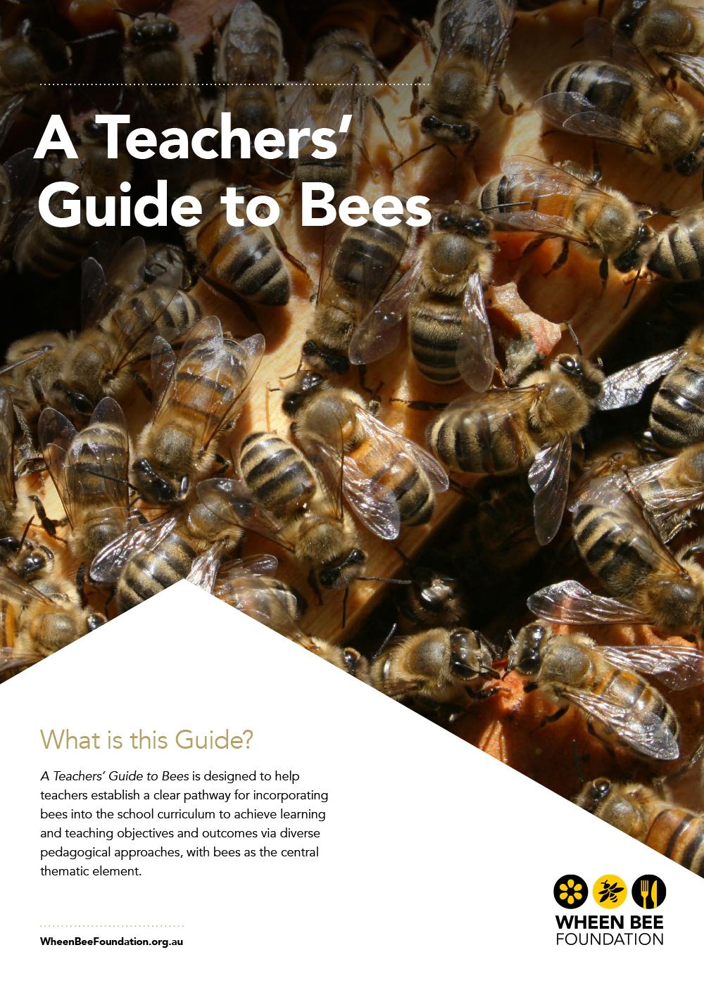 saaa_teachers_guide_to-bees)