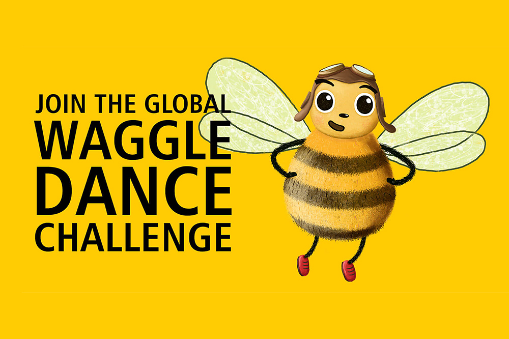 Read more about the article World Bee Day: Join the Waggle Dance